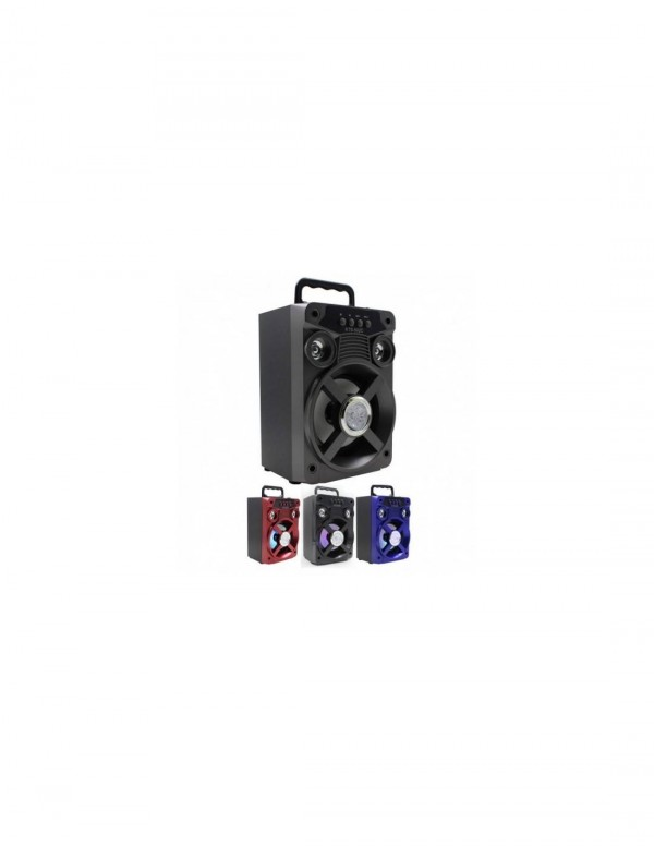 Boxa portabila KTS 502 - sunet de inalta calitate